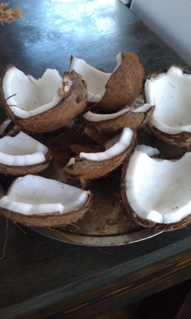 coconut pre bakes