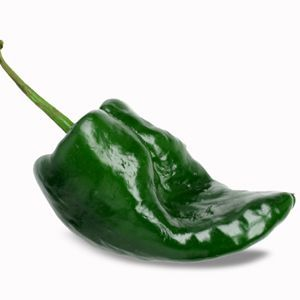 poblano-chili-pepper